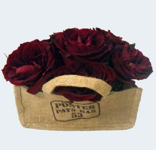 Red roses in a sack / Κόκκινα τριαντάφυλλα σε τσουβάλι